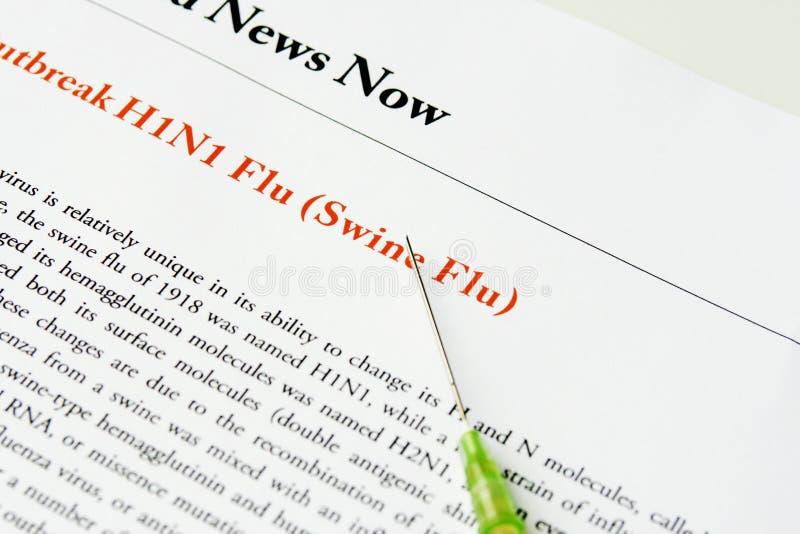 Schweingrippe stockbild