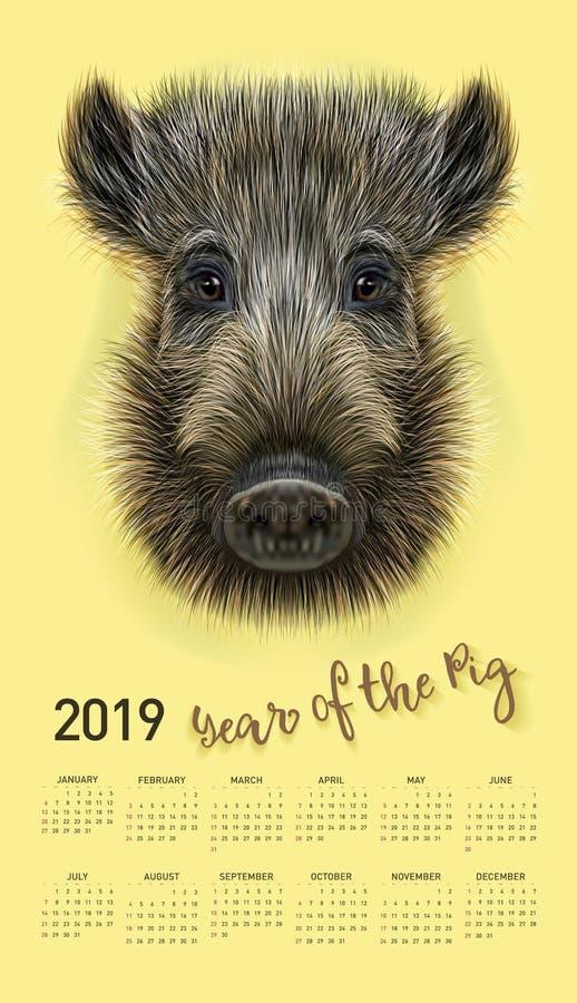 Schweinkalender für 2019 Editable Schablone des Vektors mit Konzept Symbol des Jahres im chinesischen Kalender Realistisches Vekt lizenzfreie abbildung