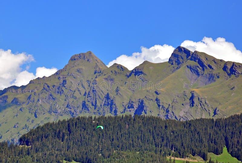 Schweizare Alpes arkivbild