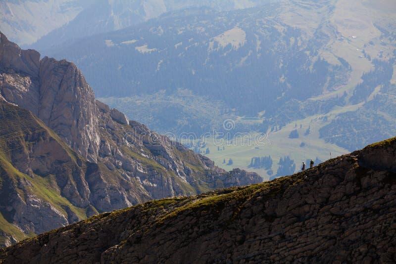 Schweizisk alpessikt från det Säntis maximumet royaltyfri foto