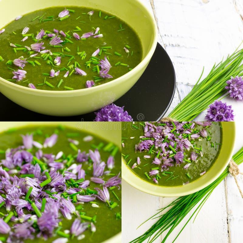 Schweizisk Chard och högg av gräslökar för potatis kräm- soppa med blommor royaltyfri foto