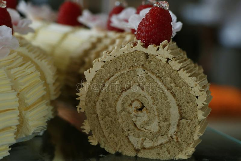 Schweizisk chokladrullkaka med hallonet arkivbild