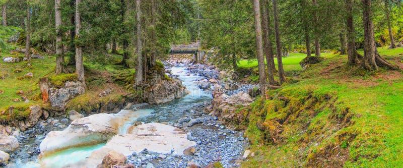 Schweizisk fjällängbergflod och granskog royaltyfria bilder
