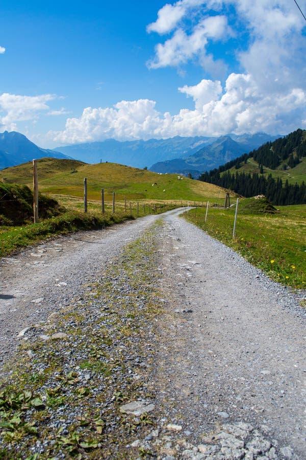 Schweizisk fjällängväg arkivfoton