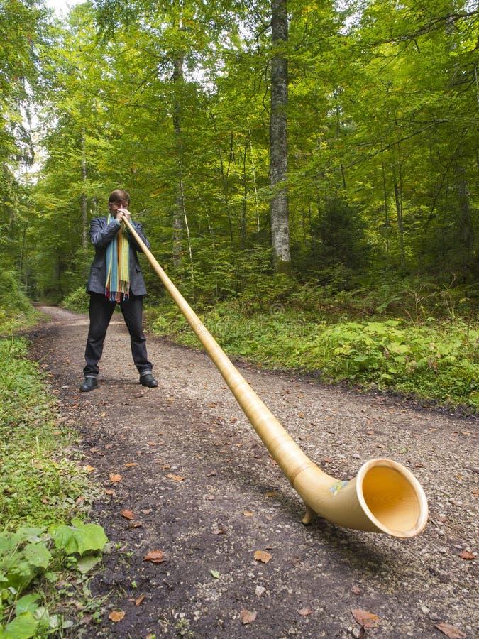 Schweizisk musiker som spelar hans Alphorn arkivbilder