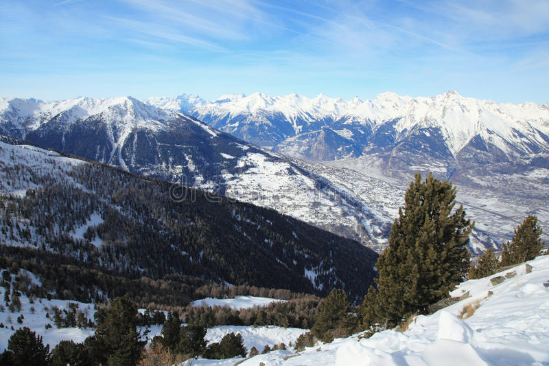 schweiziska alpes royaltyfri fotografi