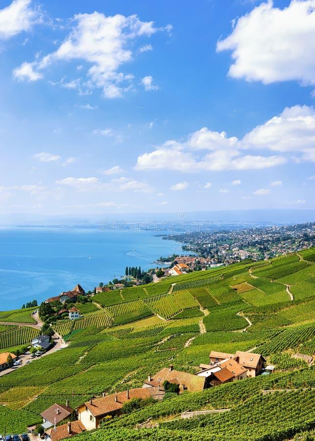 Schweiziska chalet nära den Lavaux vingården terrasserar fotvandra slingan i Schweiz arkivbilder