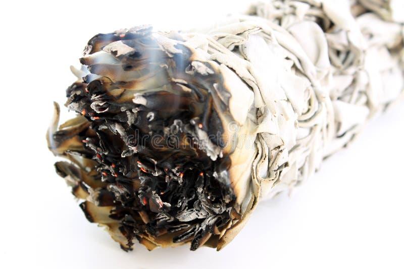 Schwelender zeremonieller weißer Salbei-Fleck-Steuerknüppel stockfotos