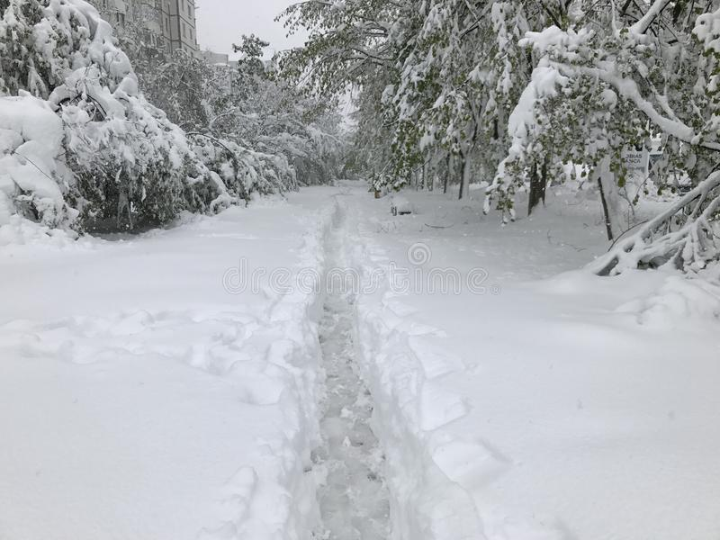 Schwere Schneefälle schlägt Chisinau mitten in Frühling lizenzfreies stockfoto