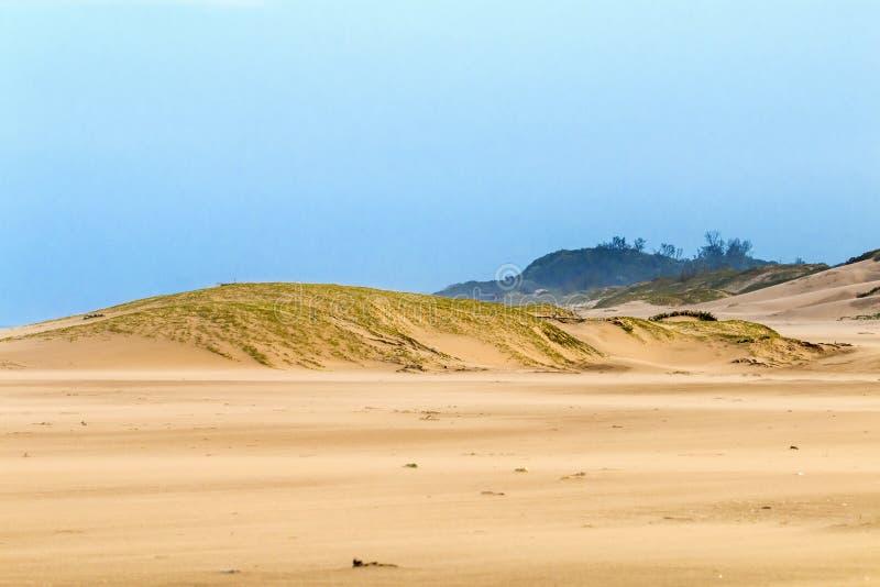 Schwerer Wind-Schlagsand auf Strand gegen Küstenskyline stockbilder