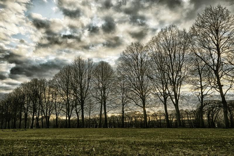 Schwerin palace garden under beautiful sky stock photo