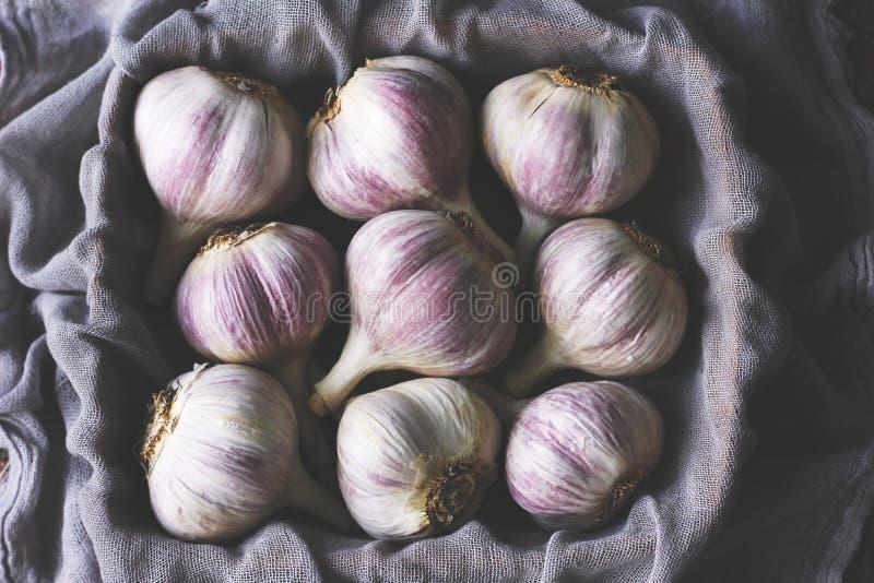 Schwermütiges Foto des ungeschälten weißen und purpurroten Knoblauchs eingewickelt in einer purpurroten Serviette stockfotos
