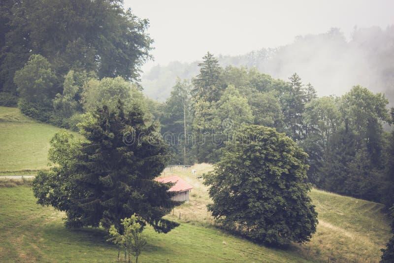 Schwermütige Herbstlandschaft in Waadt-Region, die Schweiz Nebelhafte Landschaften Nebel, nebelig Weinlese Retro-, Hippie-Art Ein lizenzfreies stockbild