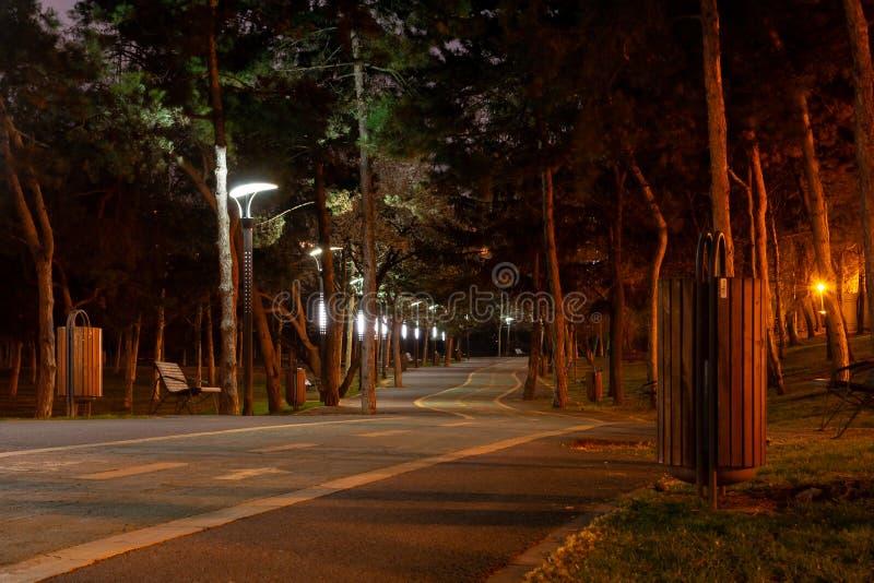 Schwermütiger Fahrradweg in einem Stadtpark, nachts, belichtet durch die hellen Pfosten des Parks Alexandru Ioan Cuza-Park alias  stockfotografie