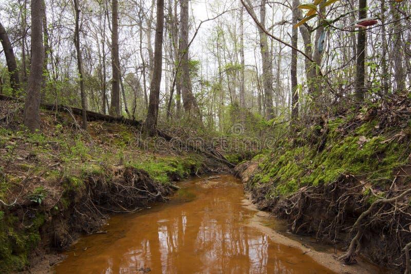 Schwermütiger Nebenfluss Vista stockfotos
