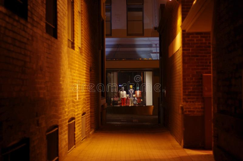 Schwermütiges Laneway, das Speichermannequins untersucht stockfotografie