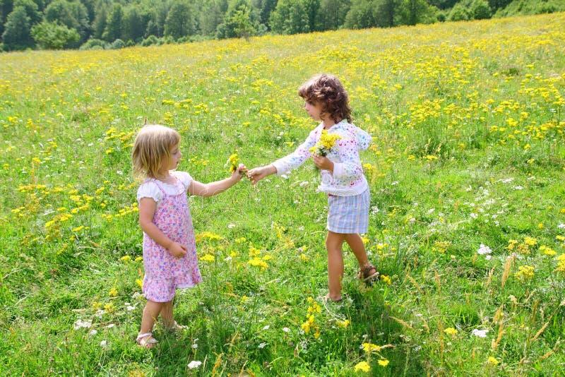 Schwestermädchen in der Wiese, die mit Frühling spielt, blüht lizenzfreie stockfotos