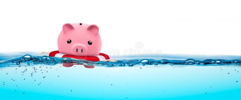 Schwimmen auf die Oberseite lizenzfreie stockbilder