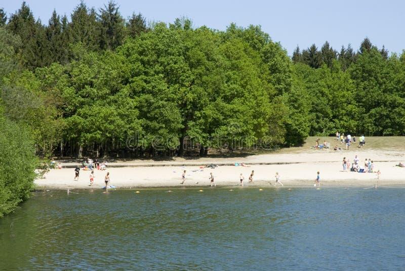 Schwimmen in einem See lizenzfreie stockbilder