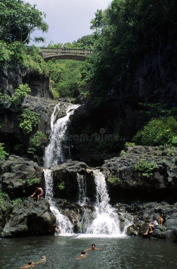Schwimmen an einem Wasserfall lizenzfreie stockfotos