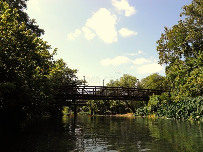 Schwimmen hinunter den Fluss lizenzfreie stockfotografie