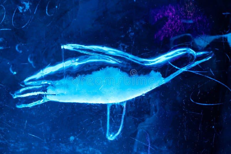 Schwimmende Pinguineisskulpturunterwasserweltkunst lizenzfreie stockfotografie