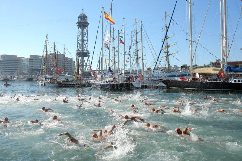 Schwimmer auf den offenen Wassern lizenzfreie stockfotos
