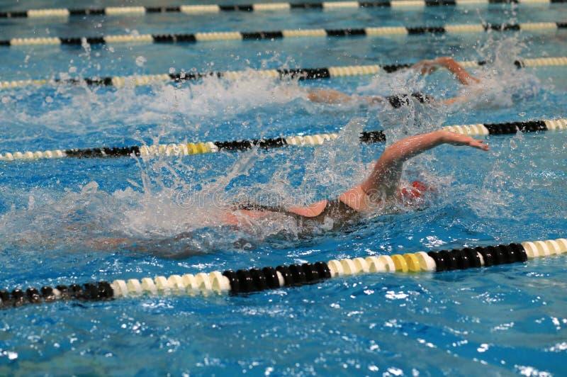 Schwimmer, die im Pool laufen lizenzfreie stockfotos