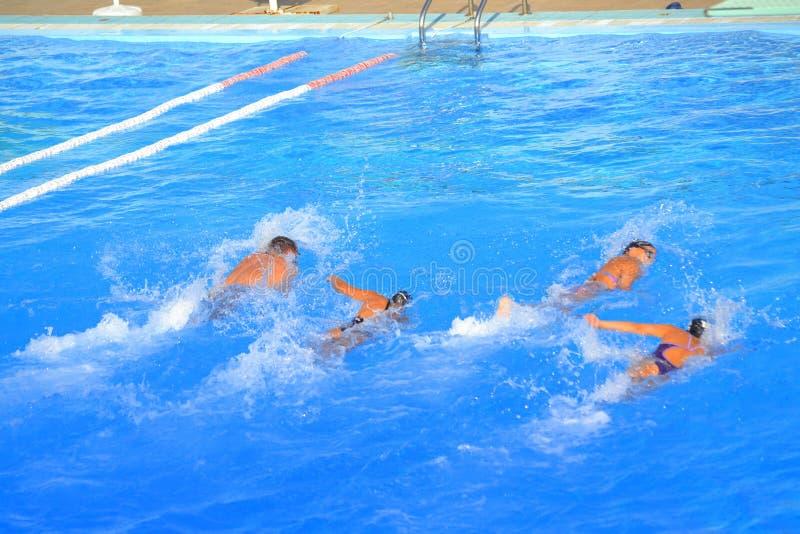 Schwimmer im blauen Wasser lizenzfreie stockbilder