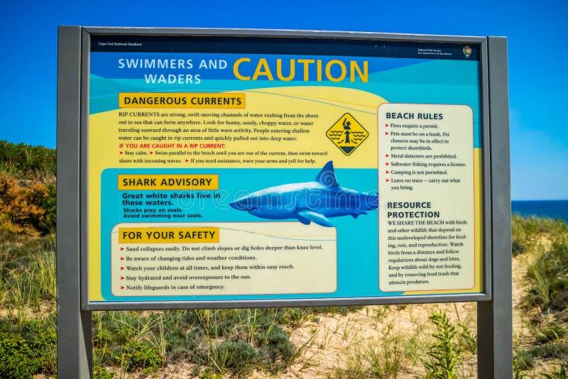 Schwimmer- und Stelzvogelsicherheitsrichtlinien in nationaler Küste Cape Cods stockfotografie