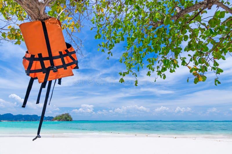 Schwimmwestejacke, die am Baum auf dem schönen Strand hängt lizenzfreies stockbild