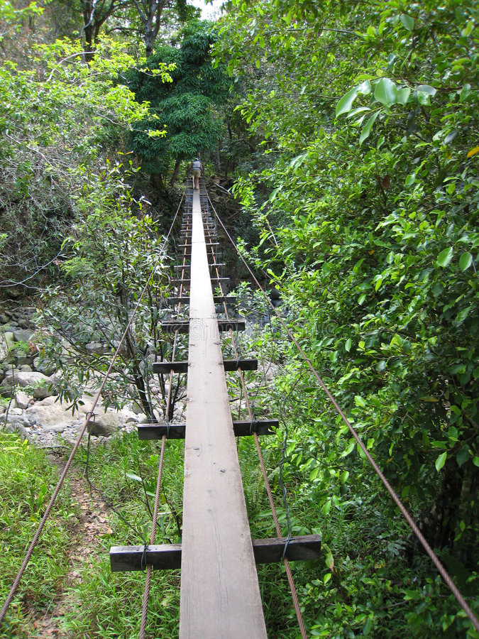 Schwingbrücke in Waihe'e Val stockbild