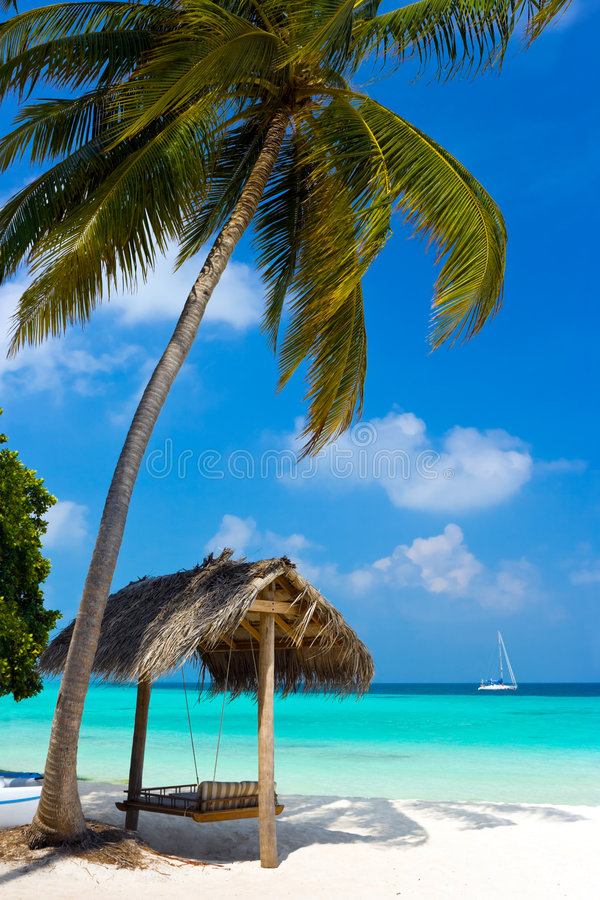 Schwingen auf einem tropischen Strand stockfotografie
