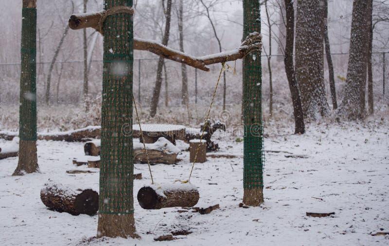 Schwingen in einem Park am Winter lizenzfreie stockfotos