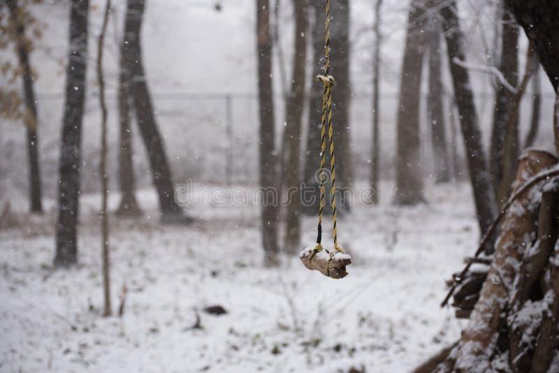 Schwingen in einem Park am Winter lizenzfreie stockbilder