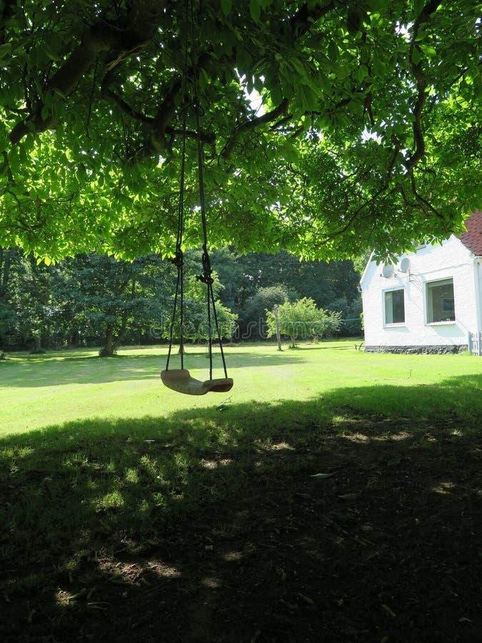 Schwingen in schattiertem Hinterhof lizenzfreies stockbild