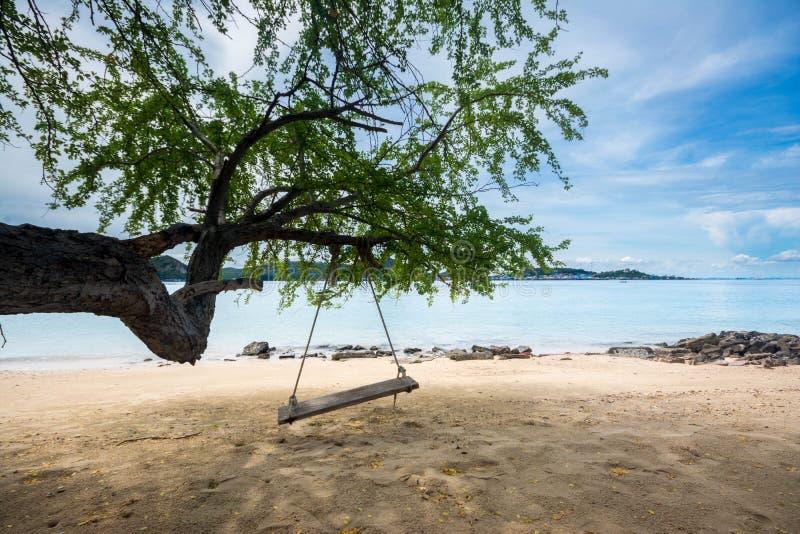 Schwingen Sie das Seil, das vom Baum in der weißen Strand Samaesan-Insel, Chonburi-Provinz, Thailand hängt stockbilder