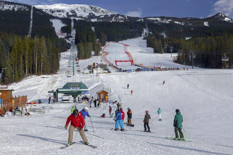 Sci alpino Alberta Canada della coppa del Mondo di Louise Ski Area Men Women FIS del lago immagine stock