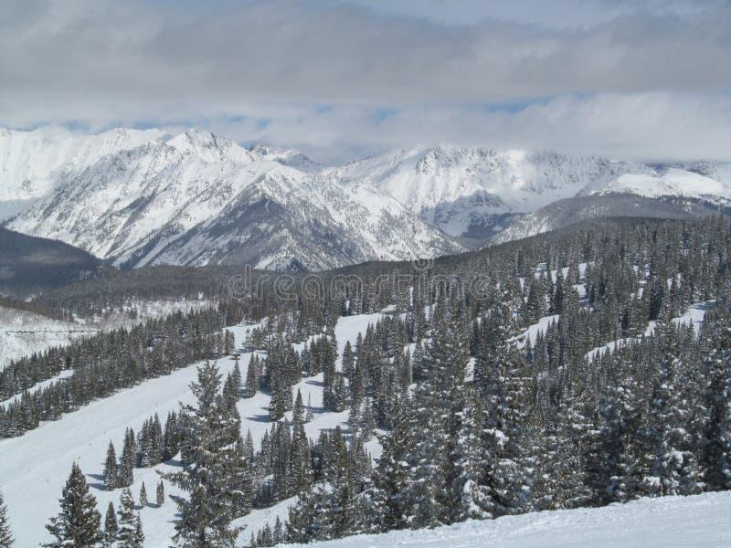 Sci a dicembre Vail Colorado immagine stock