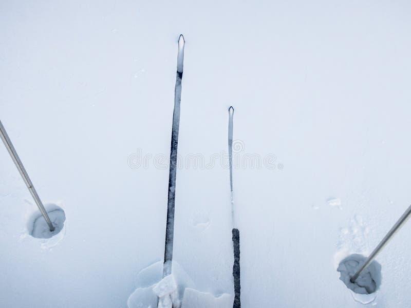 Sci e coni retinici del paese trasversale in neve profonda fotografie stock libere da diritti
