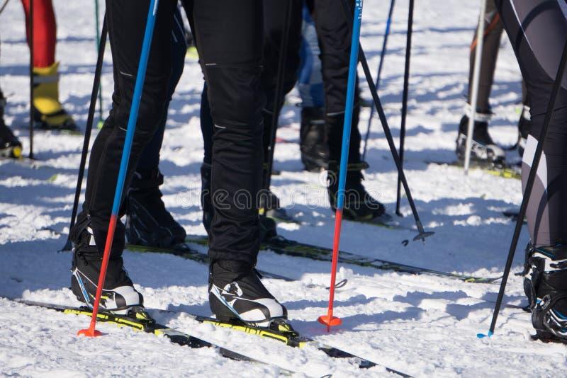 Scia la maratona la vista delle gambe dei piedi degli sciatori di molti atleti, correre nella neve immagini stock