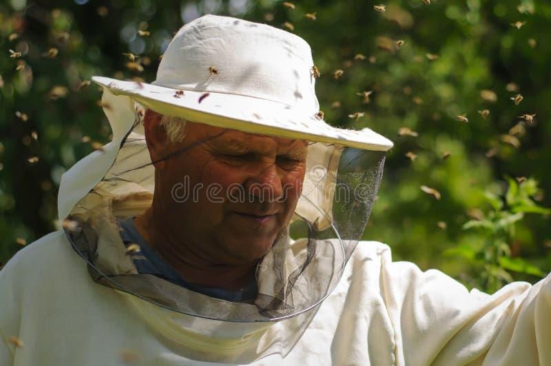 Sciame dell'ape e dell'apicoltore fotografie stock