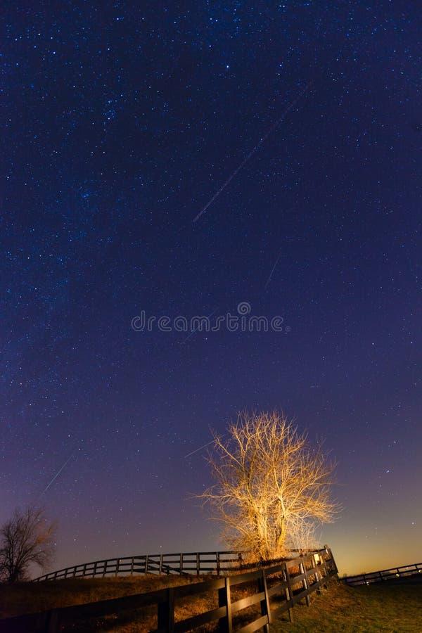 Sciame meteorico immagine stock
