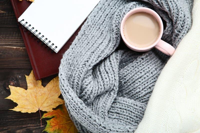 Sciarpa e maglione con caffè immagini stock libere da diritti