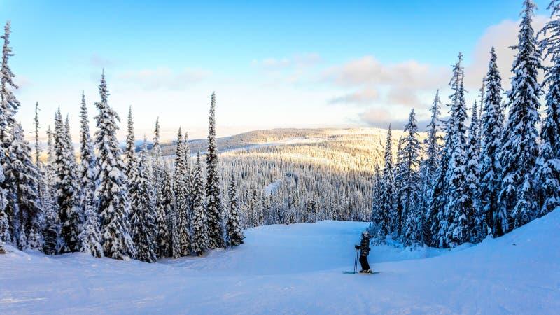 Sciatore che gode del tramonto sopra l'altopiano di Shuswap fotografia stock libera da diritti