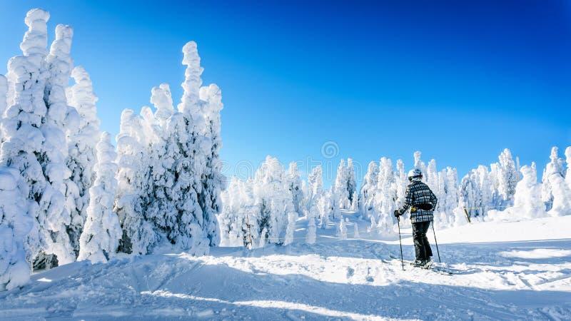 Sciatore della donna che gode del paesaggio di inverno di neve e degli alberi coperti di ghiaccio immagini stock