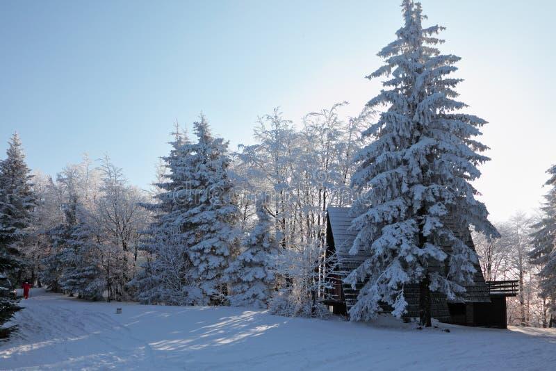 Sciatore in un vestito di pista rosso nel Tatras immagini stock