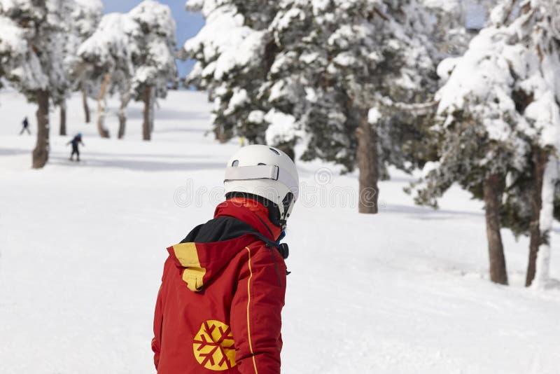 Sciatori sul pendio nevoso della foresta Paesaggio bianco della montagna Inverno immagini stock