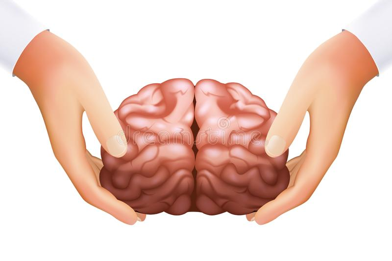 Science concept hands holding human brain mind organ isolated on white icon realistic 3d design template vector stock illustration