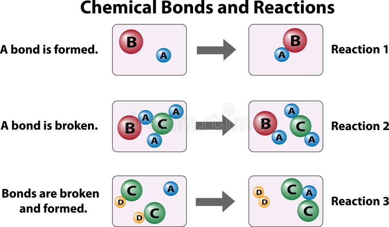 Chemical Bonds and Reactions. This science education diagram shows chemical reactions and how they break and form bonds between atoms. Three reactions types stock illustration